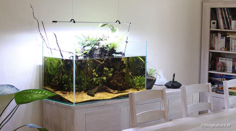 Combien de temps un aquarium peut rester sans pompe